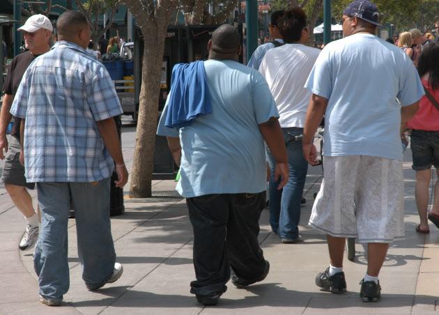 1980年代以降の食生活の変化が米国人の肥満に拍車をかけたという
