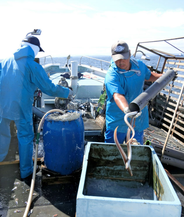 東京湾の中央部でアナゴ筒漁を ...