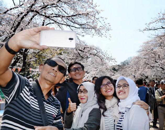 東南ア、訪日ブーム開花 桜の季節アピール :日本経済新聞