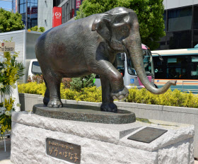 完成したアジアゾウ「はな子」の銅像(5日午前、東京都武蔵野市)=共同