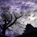 アートレビュー夜空に輝く星の物語