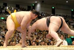 遠藤(左)が豪栄道を突き落としで破る