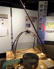 「大昆虫食博」では地元やアジアの昆虫食文化を展示している(長野県伊那市)