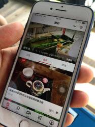 30秒の動画を投稿し、体験を共有する(京都市、二条城)