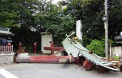 倒壊した埼玉県久喜市の鷲宮神社の鳥居(11日)=共同