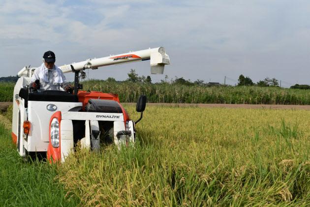 「減反」廃止2年目 増産進まず米価高懸念 業務用米に品薄感  :日本経済新聞