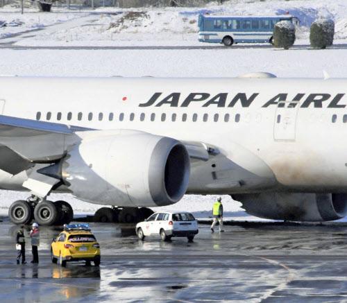 일본항공 잔디