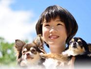 ペットを家族の一員として供養したい需要に対応する(イメージ)